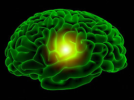 green_brain_small