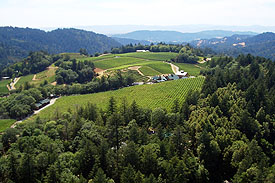 Pride Mountain Vineyards from above