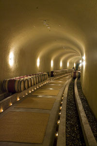 The Subterranean Cellar of Vineyard 7 & 8 (Photo Credit: Curt Fischer)